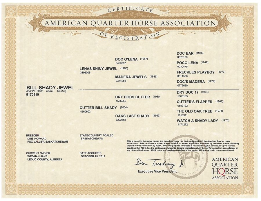 Bill Shady Jewel - AQHA Papers