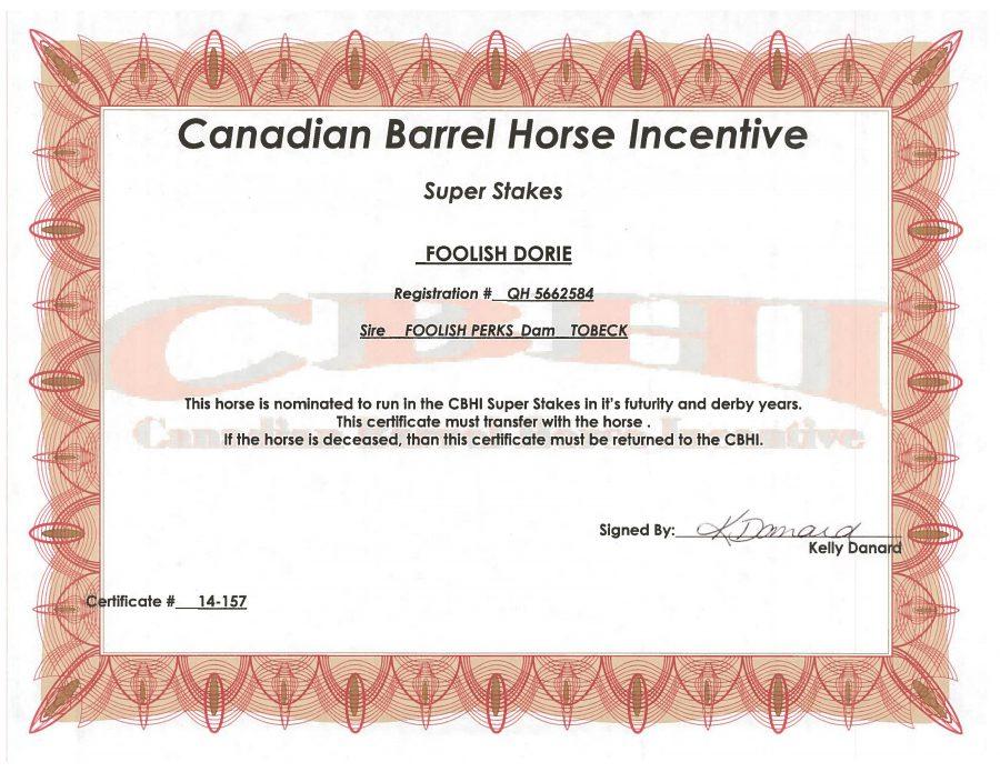 Foolish Dorie - SS Certificate