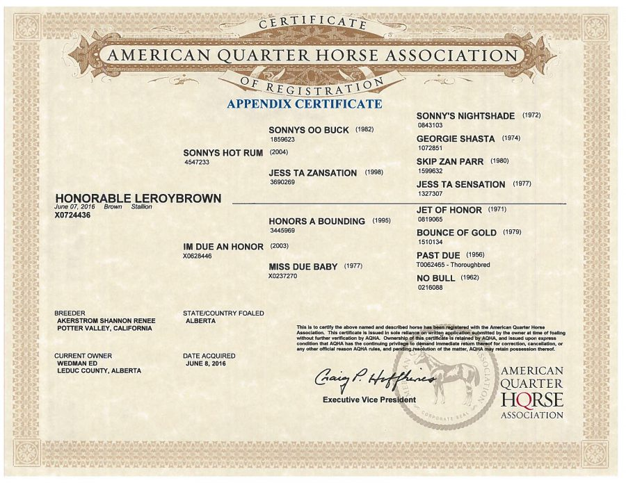 Honorable LeroyBrown - AQHA Papers