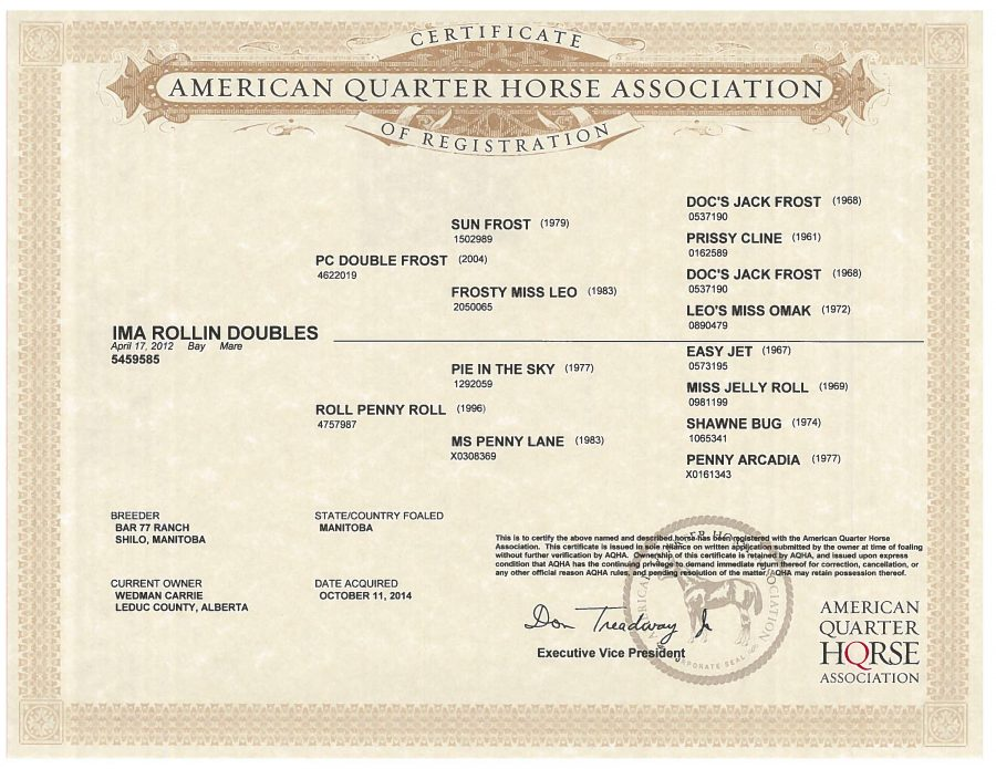 Ima Rollin Doubles - AQHA Papers