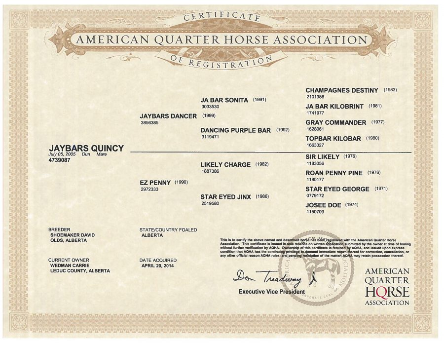 Jaybars Quincy - AQHA Papers