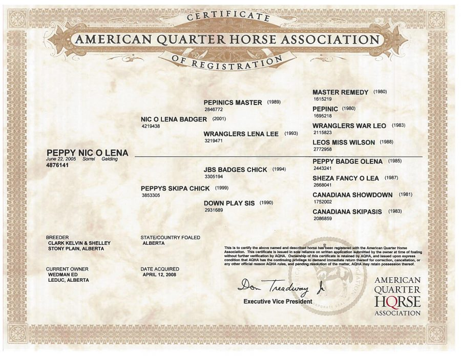 Peppy Nic O Lena - AQHA Papers