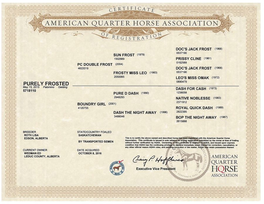 Purely Frosted - AQHA Papers