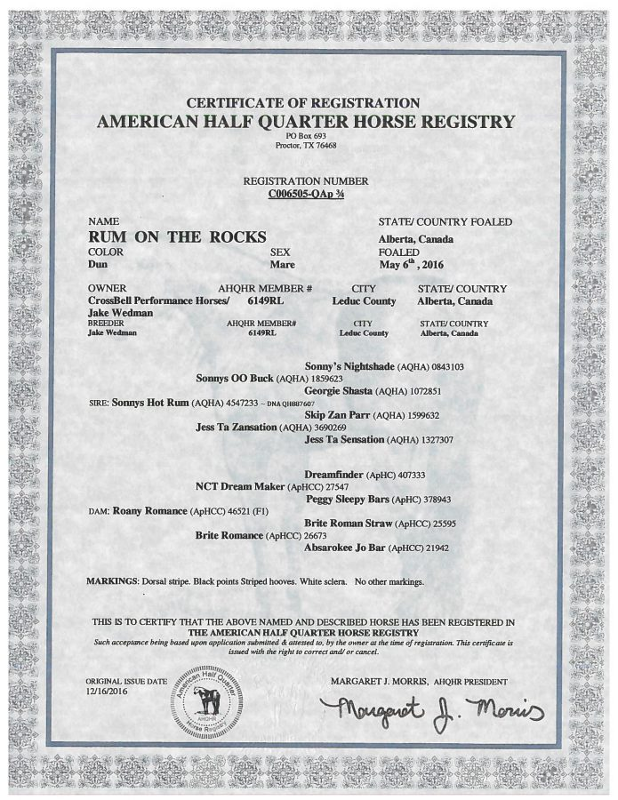 Rum on the Rocks - AHQHR Papers