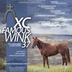XC Famous Wink 37 - 2018 Stallion Poster
