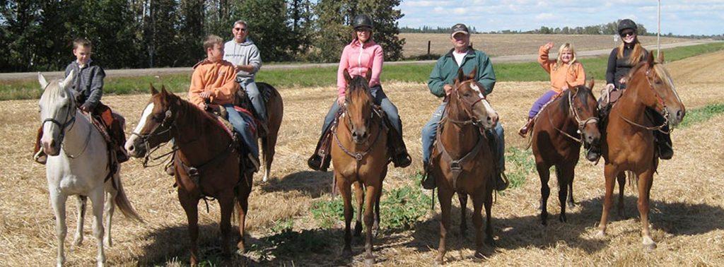 CrossBell Performance Horses