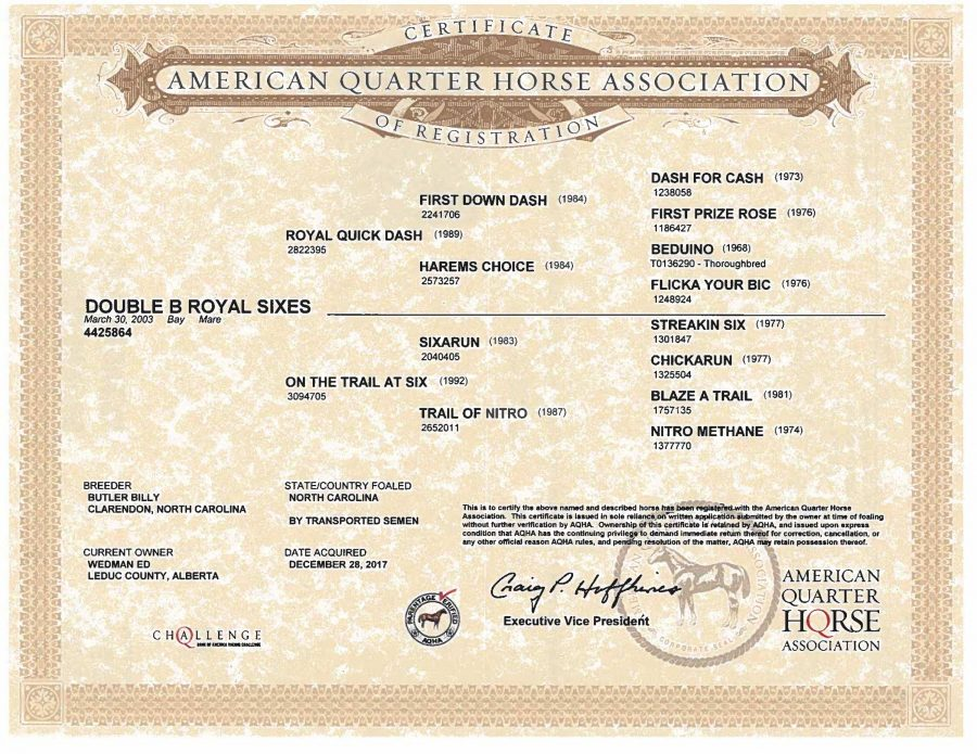 Double B Royal Sixes - AQHA Papers