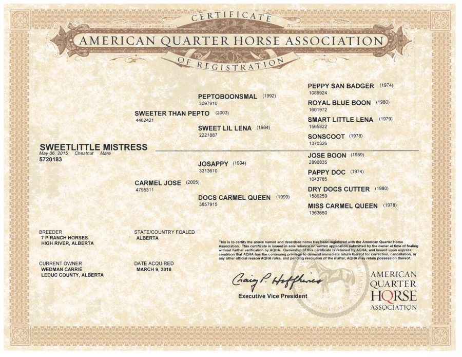 SweetLittle Mistress - AQHA Registration