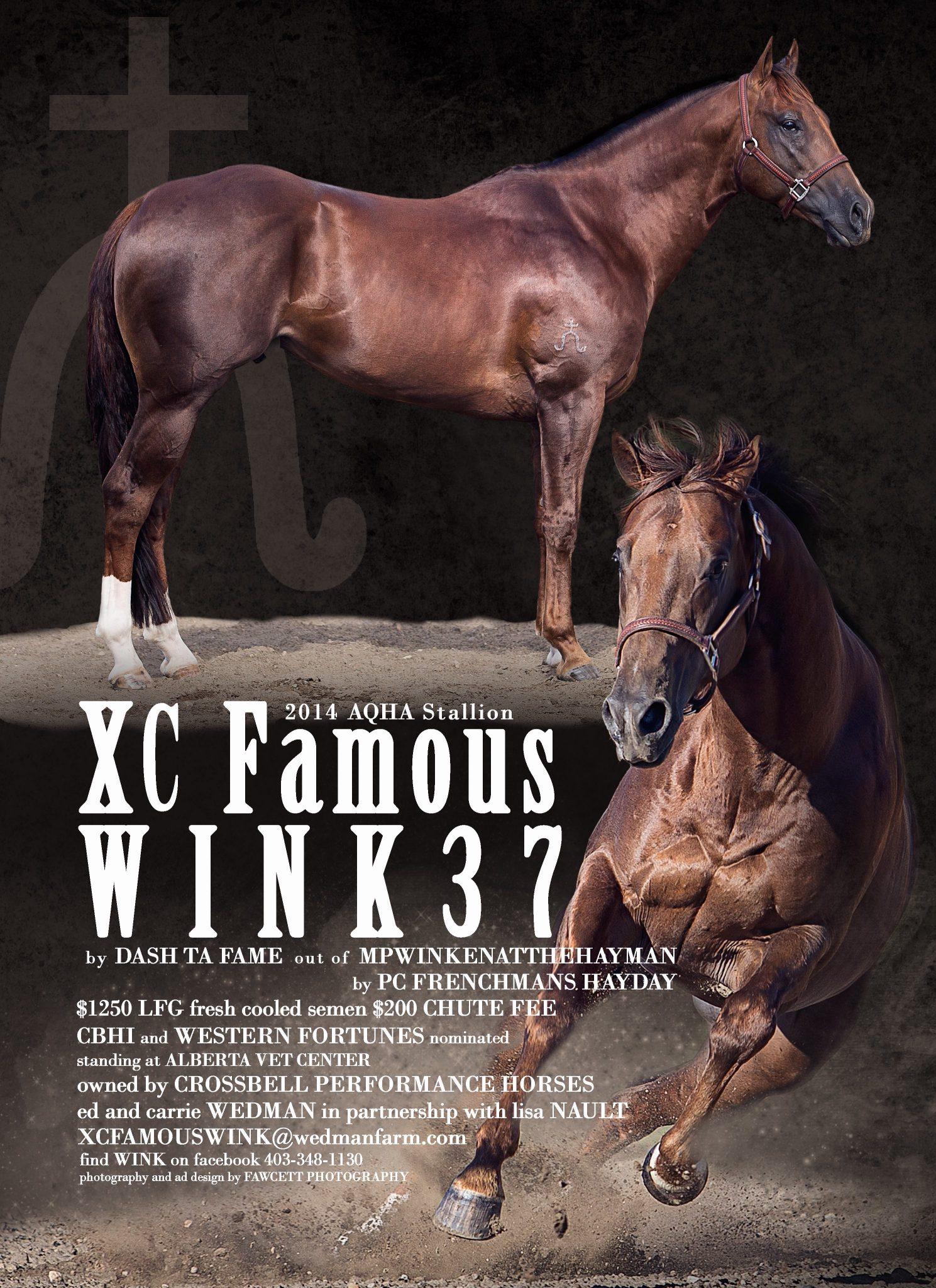 XC Famous Wink 37