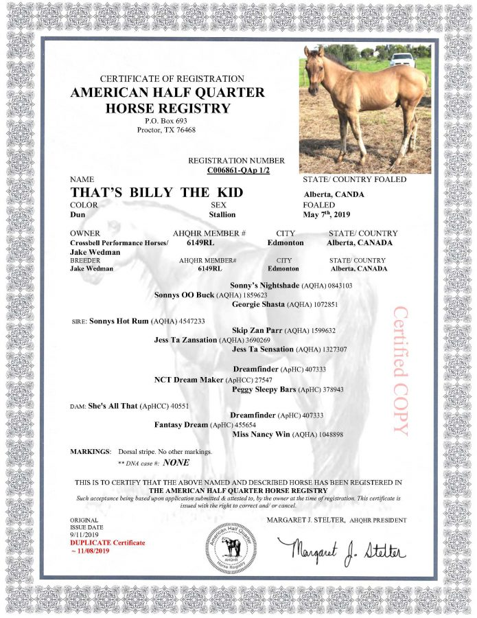 That's Billy The Kid - AHQHR Papers