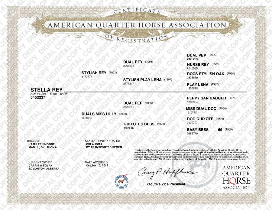 Stella Rey AQHA Papers