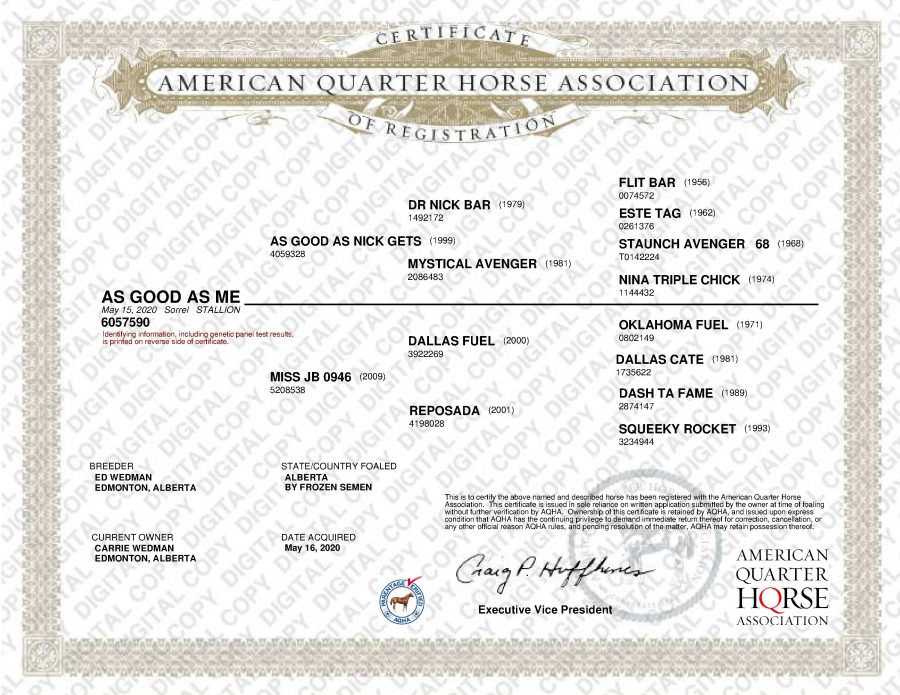 As Good As Me - AQHA Papers