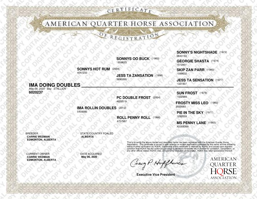 Ima Doing Doubles - AQHA Papers