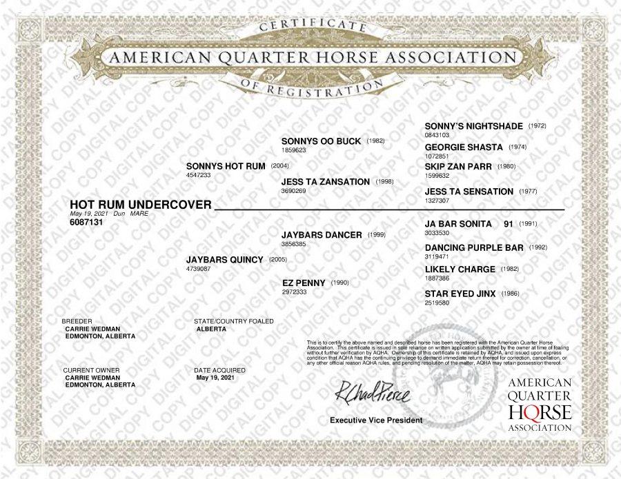 AQHA Papers - Hot Rum Undercover